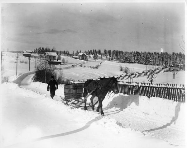 Sørkedalsveien med Røa Handelsforening i bakgrunnen. År: 1902. Fotograf: Anders Beer Wilse. Fra arkivet etter Byplankontoret (A-10002/Ub/0002/003)