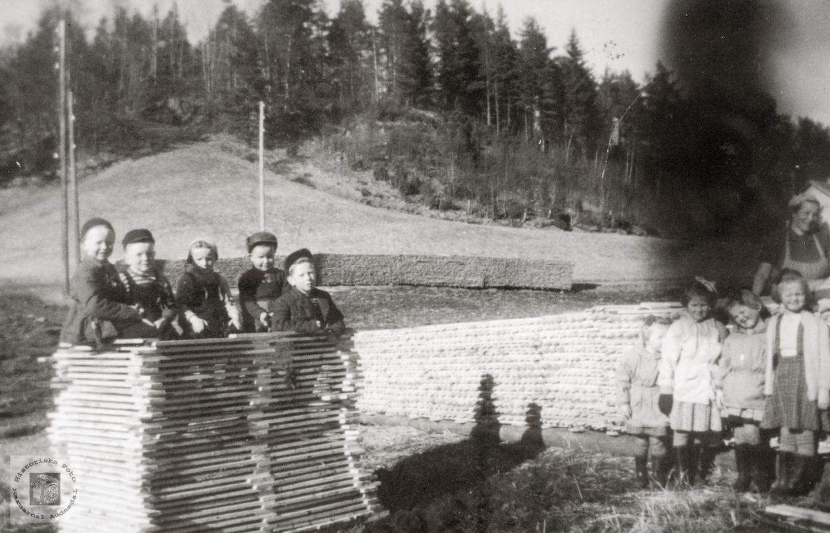 Stabling av tønnestav på Leland i Grindheim senere Audnedal.