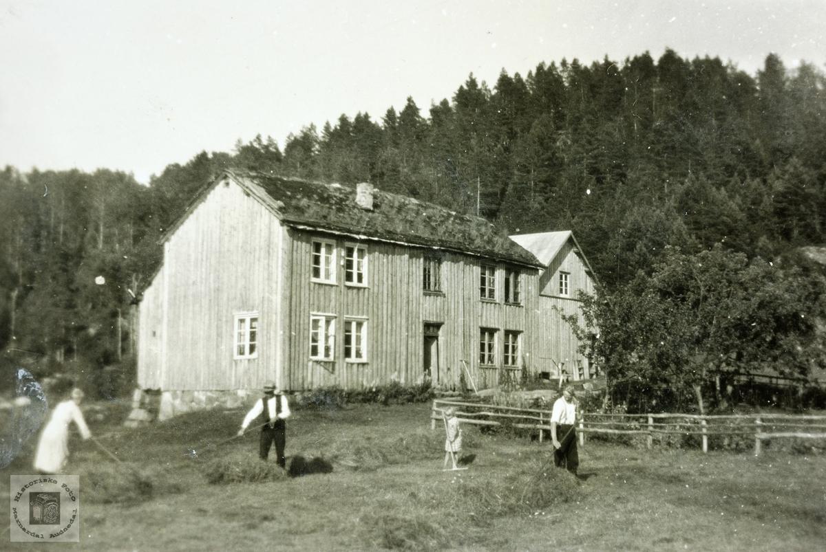 Slåttefolk ved de gamle husene på Butveit. Grindheim.