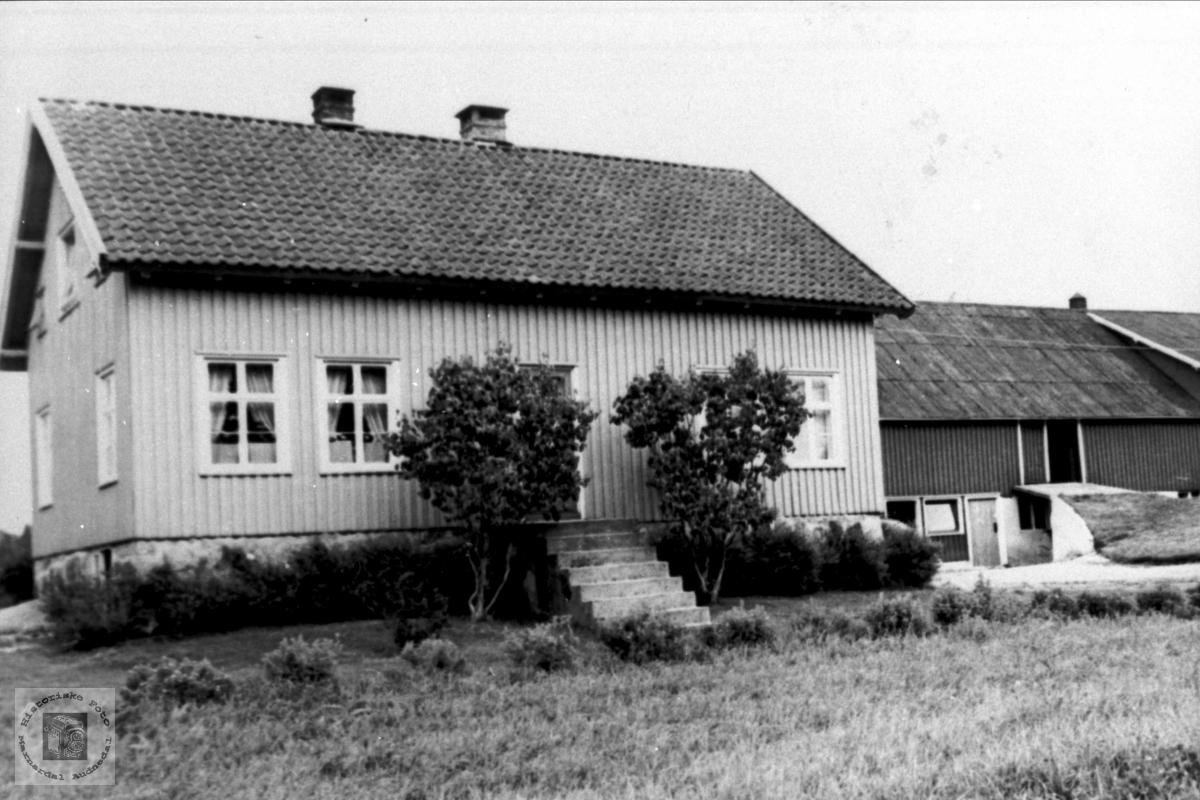 Øygarden i Bjelland.