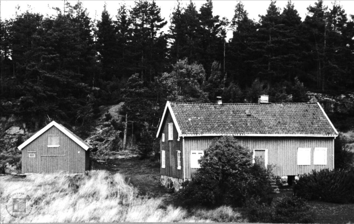 Skoddan i Øyslebø.