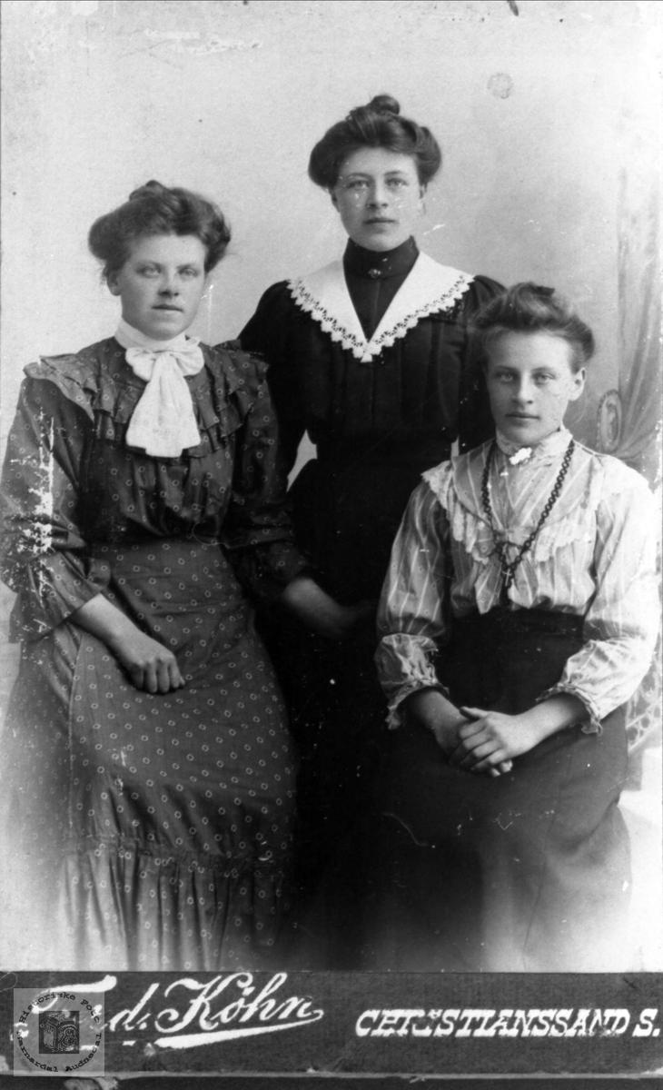 Gruppeportrett av Anna, Anna og Asborg Haugland, Bjelland.
