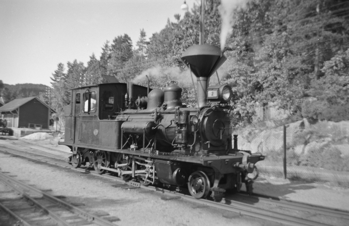 Setesdalsbanens damplok XXI nr. 2 på Hægeland stasjon.