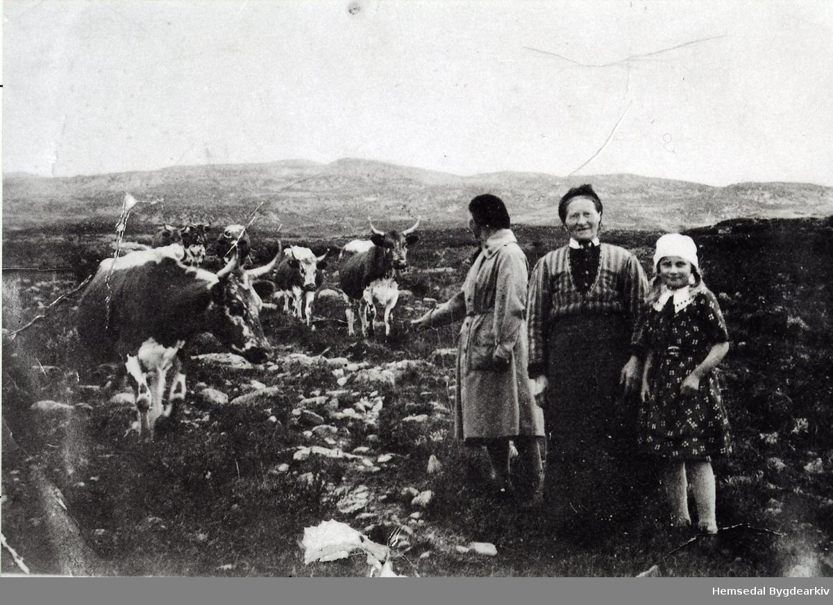 Holdeskaret i Hemsedal i 1937 Frå venstre: Fru Magnesen (bydame), Margit Fekene og Magnhild Flaget