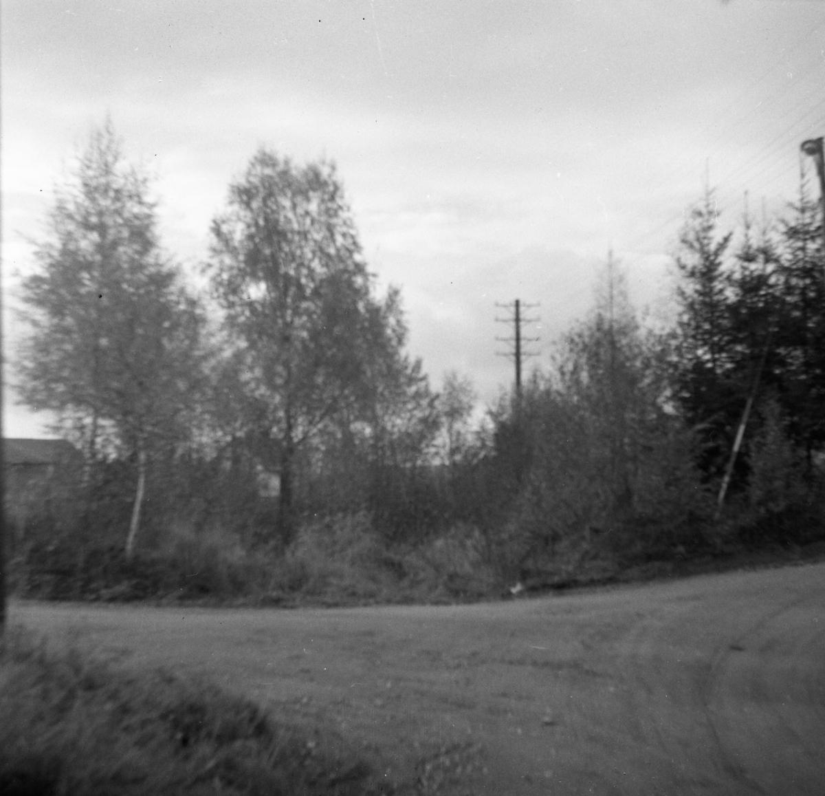 Tertittens tidligere trasé mellom Fossum og Kvevli, her ved Monsrudpensen.