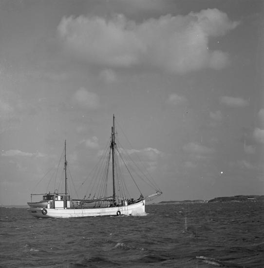 Kuttern HARRY av Grundsund