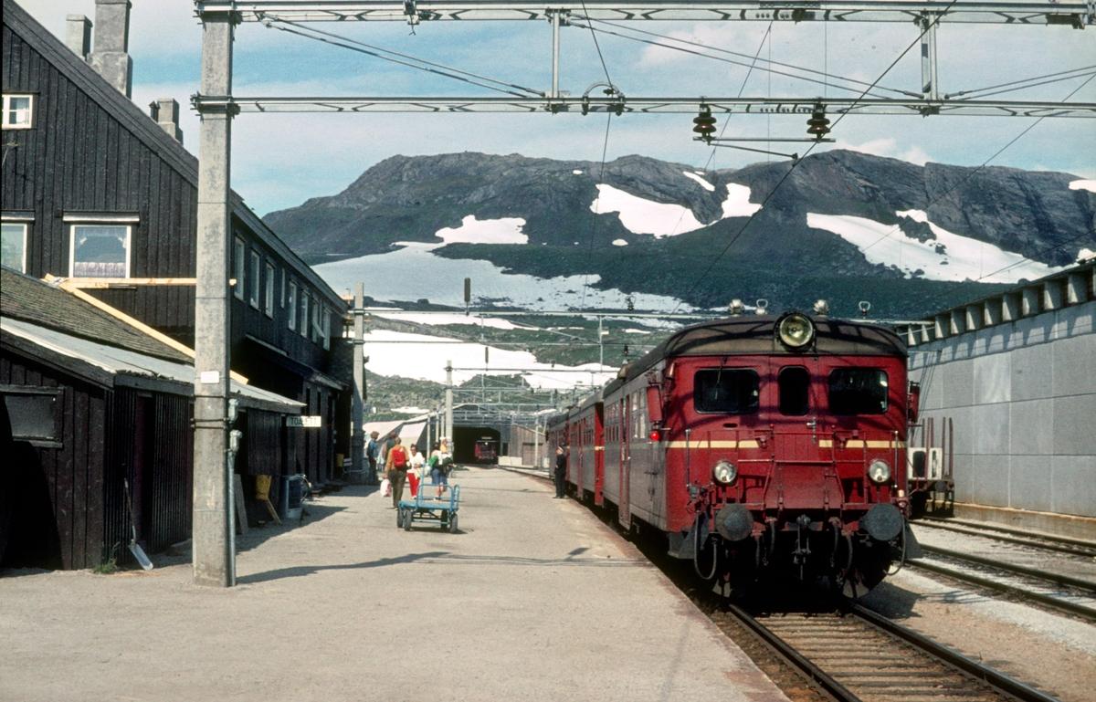 Bergensbanen. Finse stasjon. Tog til Flåm. NSB motorvognsett type 65c.