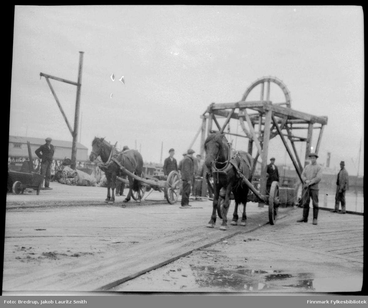 To hester med kjerrer venter antakelig på last på ei kai i Vardø.  Flere arbeidskarer i bakgrunnen.  Vi ser en heiseanordning og et vektstativ på kaia.