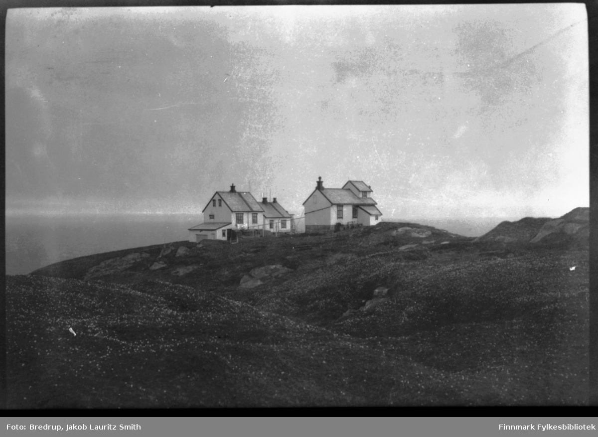 Bilde av et fyr i Finnmark, to hvitmalte bygninger.  Antakelig er det Vardø fyr på Hornøya.  Fyret ble oppført midt på 1890-tallet.  Området rundt bygningene er overstrødd med hvite blomster, multer?