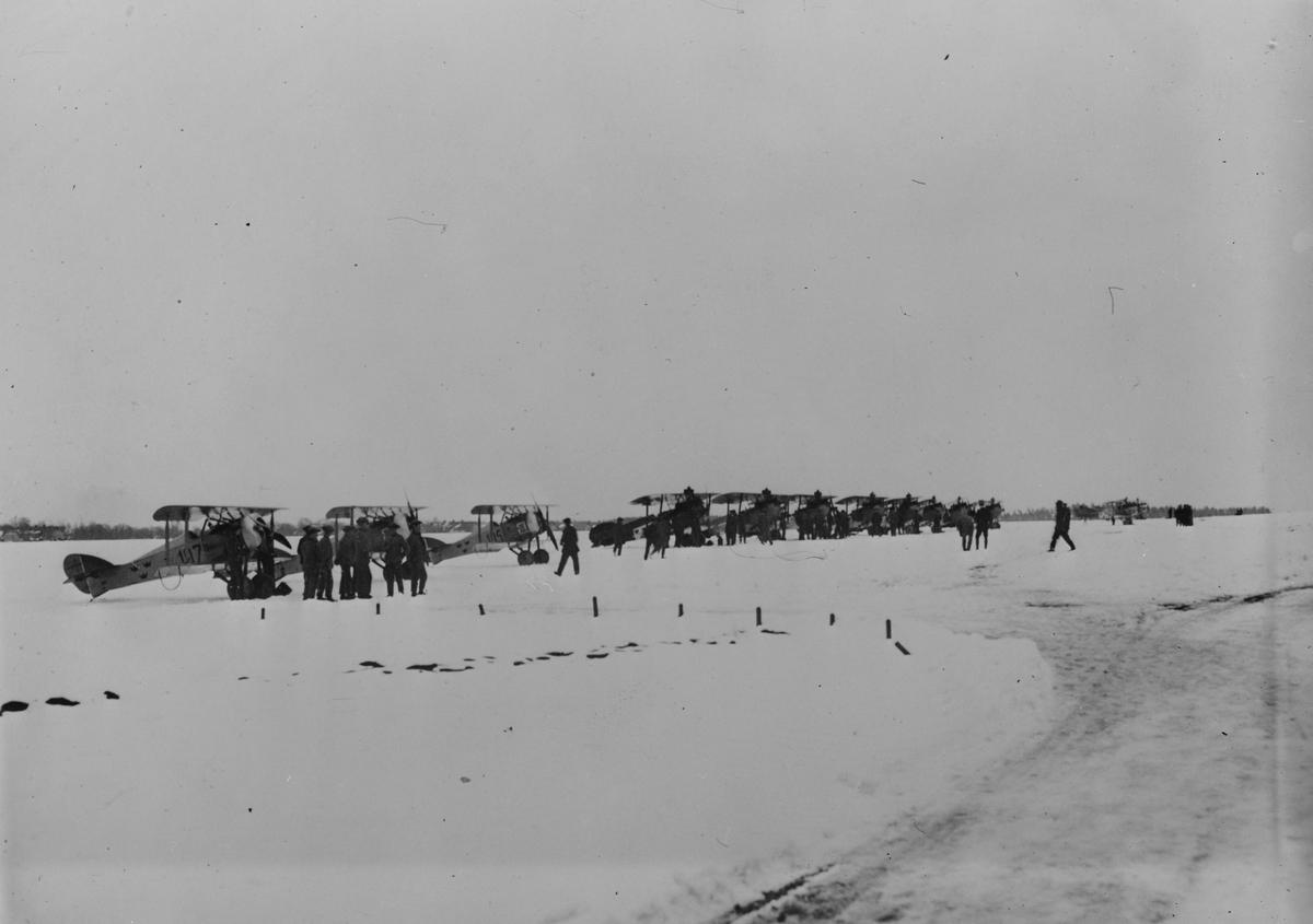 Flygplan Tummeliten och Albatros står på linje på ett flygfält, vintertid. Militärer i rörelse.