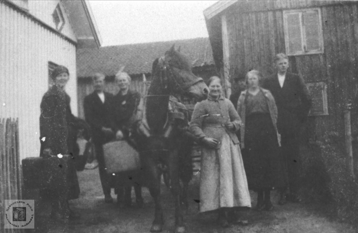 Familiebilde Høye