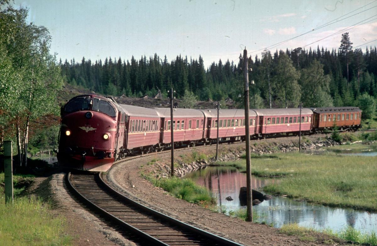 Persontog 284 (Fagernes - Oslo Ø) ved Trevatn stasjon med NSB dieselelktrisk lokomotiv Di 3 624.
