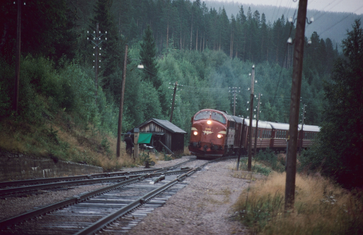 """Barkald stasjon. Signal """"Innkjør"""", grønt flagg, vises til tog 301, dagtoget Oslo - Trondheim over Røros. Togfører (overkonduktøren) i tog 372 assisterer ved kryssingen og står ved sporvekselen. Barkald var en av de siste stasjonene som ikke hadde elektriske innkjørsignaler."""