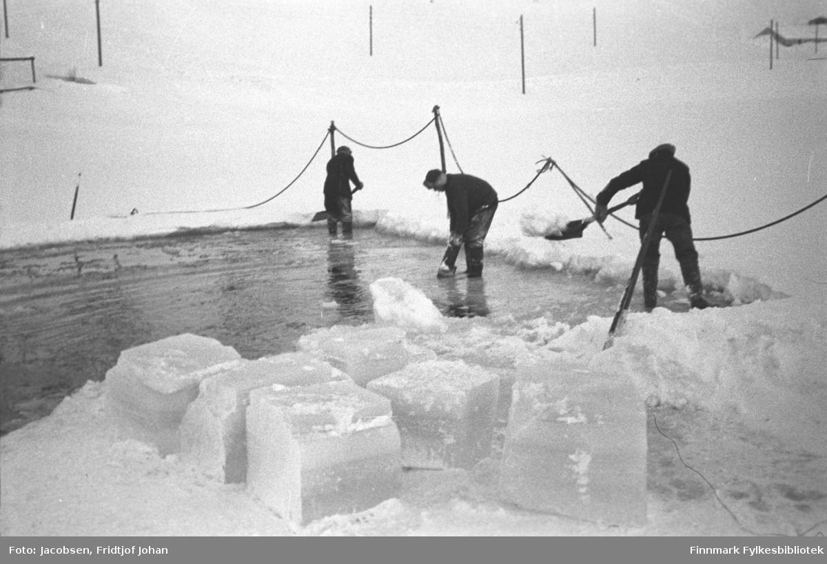 Isskjæring på Storvannet i Hammerfest. Tre menn  i mørke klær måker med hver sin spade. Stolper med tau i mellom er satt opp som rekkverk ved åpningen i isen. Flere stolper står rundt i terrenget og taket på en delvis nedsnødd bygning ses oppe til høyre på bildet.