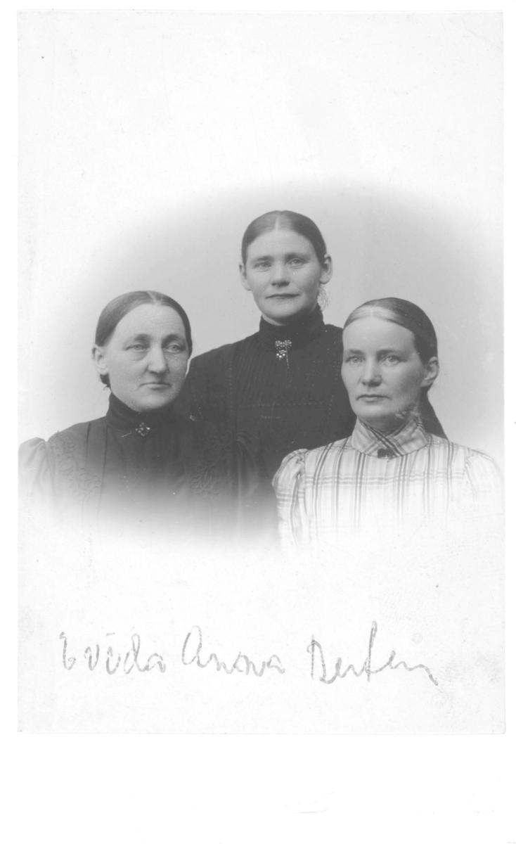 """Halvfigur portrett av tre e kvinner. På bildet står det notert """"Evida, Anna, Berten"""". Evida kan være Evida Persen, født 1863 og gift med handelsmand Weksel Persen."""