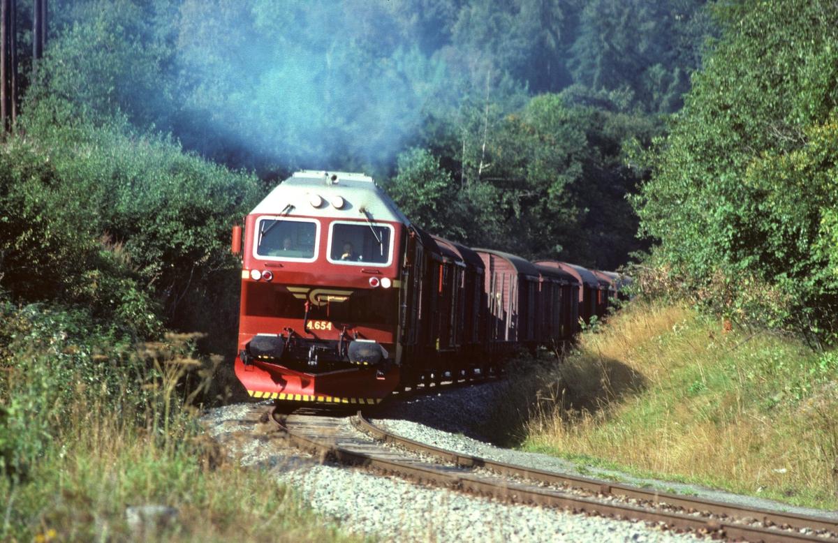NSB godstog 5793, Trondheim - Bodø, med dieselelektrisk lokomotiv Di 4 654, legger i vei på sin 17 timers ferd ut fra Marienborg stasjon og over Stavne - Leangenbanen.