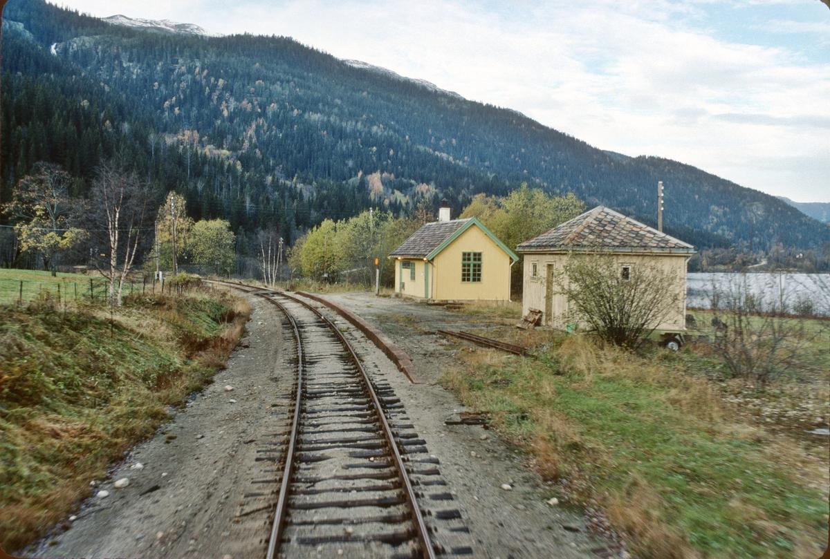 Kravikfjord holdeplass, tidligere stoppested, Numedalsbanen. Numedal. Sett fra førerrommet i tog til Rødberg.