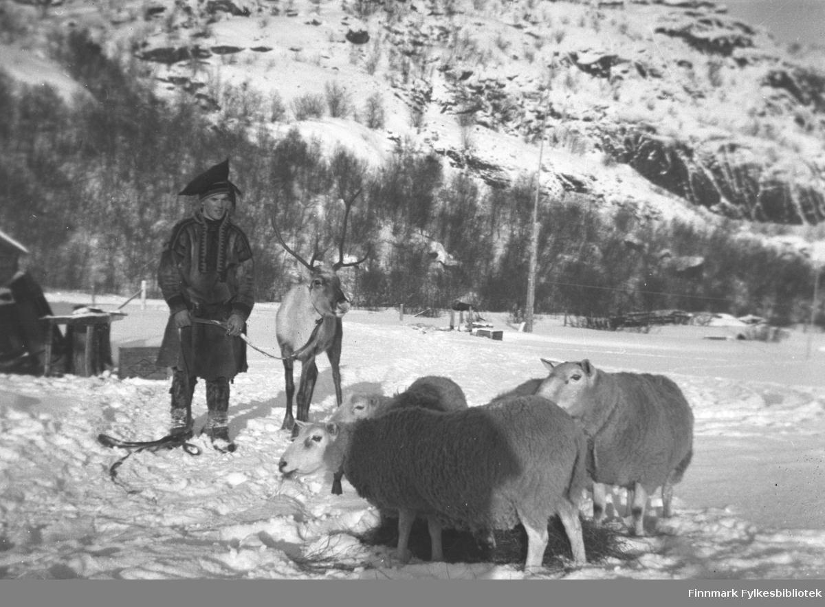 Leif Mikkola med kjørereinen sin på Mikkelsnes