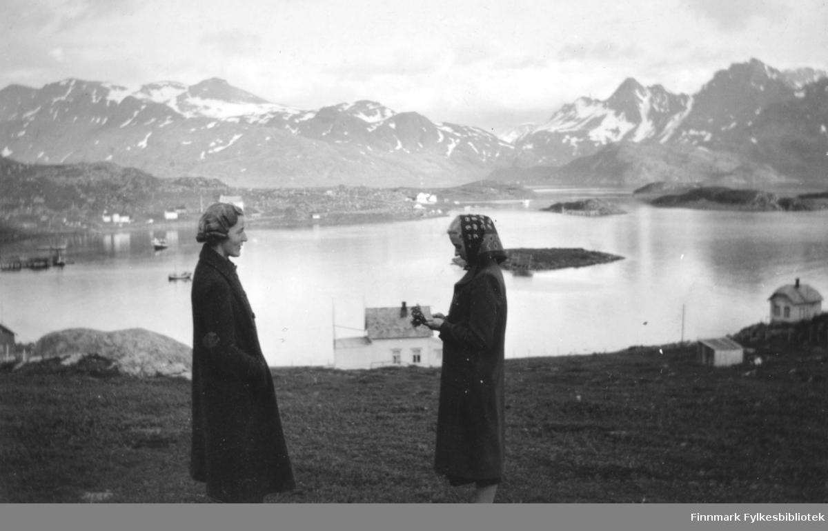To damer står på en liten slette ovenfor Bergsfjord. Damen til venstre har en mørk kåpe på seg. Det har også den andre damen. Hun har også et mønstret tørkle på hodet. En stor stein ligger til venstre på bildet. Et hvitt hus ses mellom dem lengre nede mot fjorden. Det har skiferdekke på taket og en skorstein på midten. Flere bygninger ses langs sjøkanten på andre siden av bukta. Noen båter ligger fortøyd ute på havna. Noen holmer ses til høyre på bildet, nærmest kamera er sannsynligvis Skjåholmen. I bakgrunnen ligger høye fjell med snøflekker på toppene. Sjøen ligger blikkstille og endel skyer ses på himmelen.