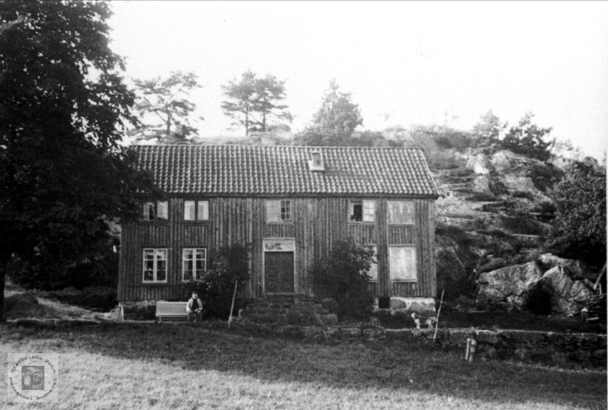 Mjunåsen (Mønsås).