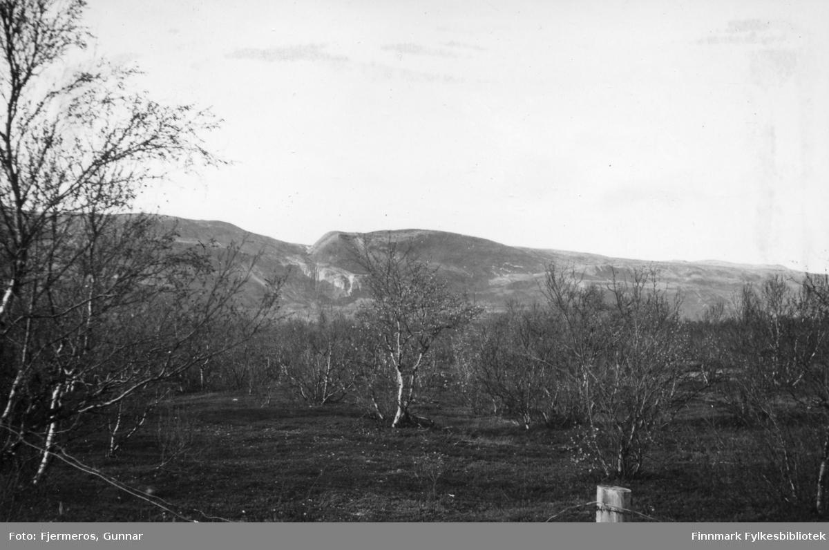 Bilde fra Banak i Lakselv sommeren 1948.