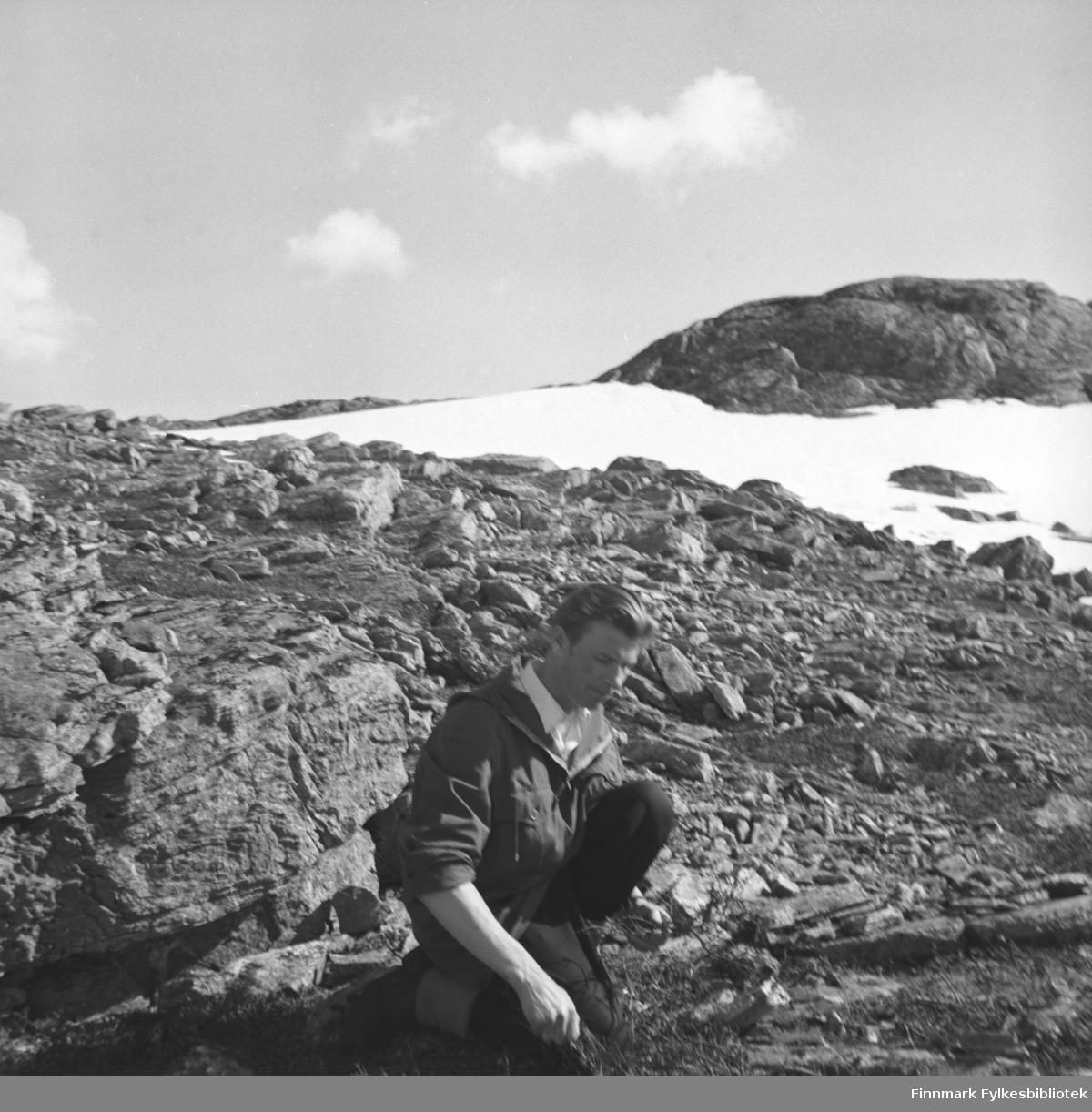 Eino Drannem samler materialer for å tenne bål på en  fjelltur sammen med familien sin (i Hammerfest)
