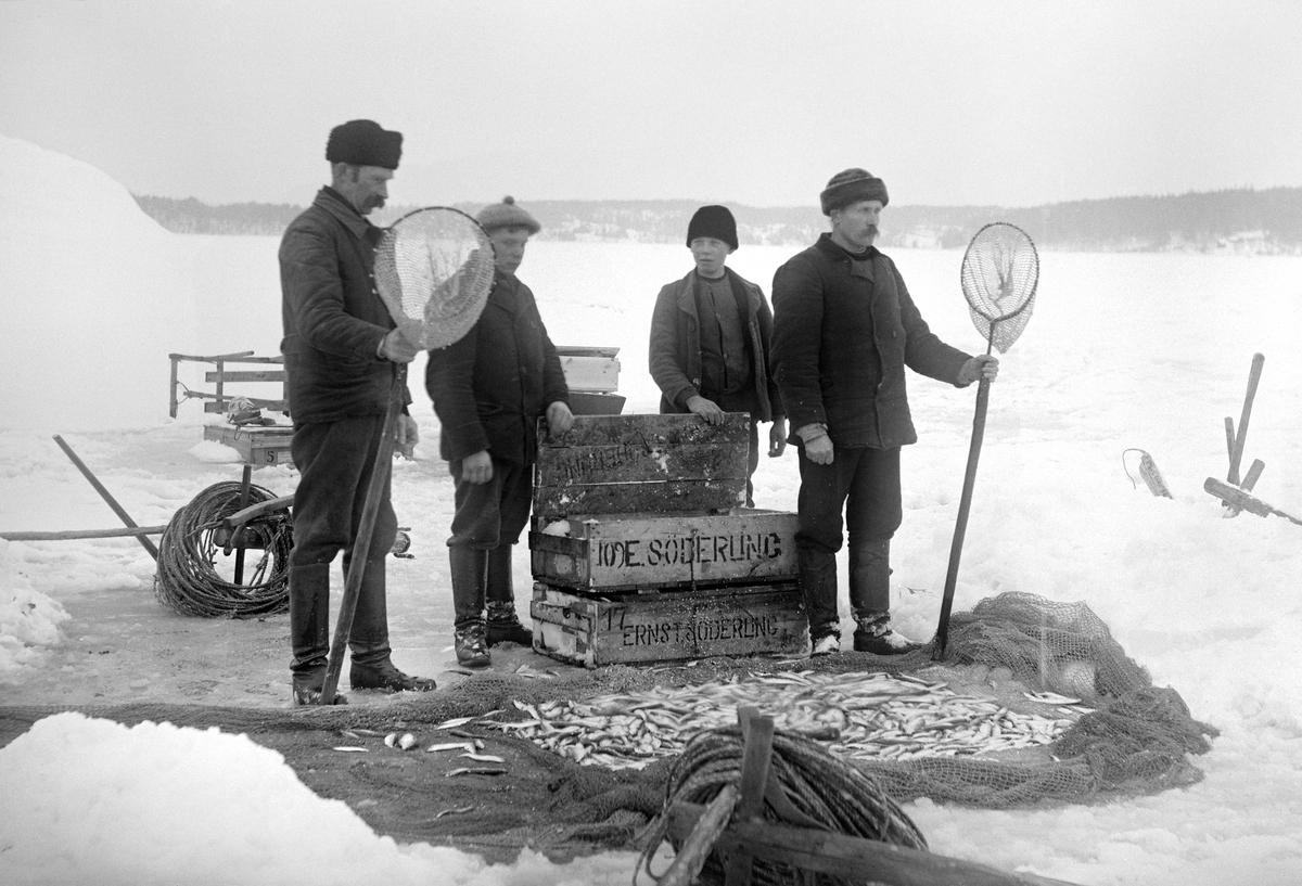 Strömmingsfiske i närheten av ön Röskär i Lindersfjärden, Sankt Annas skärgård. En fiskare Andersson bosatt i Aspöja ska enligt uppgift vara en av dessa män.