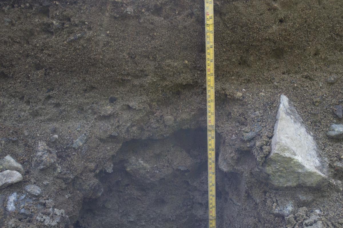 Boplass, steinalder. Prøveserie 3 (profil 3) pollen/makro. S.