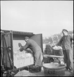 To menn pakker leirkrukker i en trillevogn. De har lagt høy