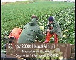 28.november 2000: Kål til jul og meir plast