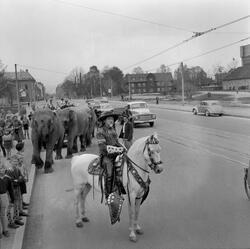 Cirkus Berny i byen. Buffalo Bill i Prinsens gate og på Elge