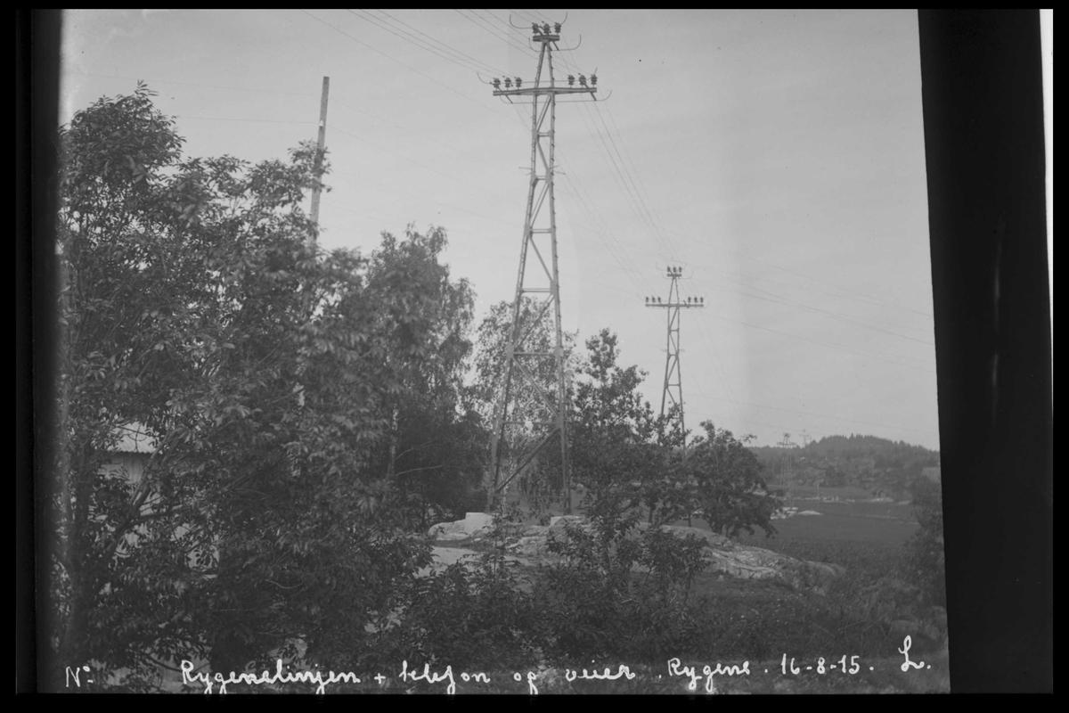 Arendal Fossekompani i begynnelsen av 1900-tallet CD merket 0565, Bilde: 77 Sted: Rygene Beskrivelse:Kraflinja