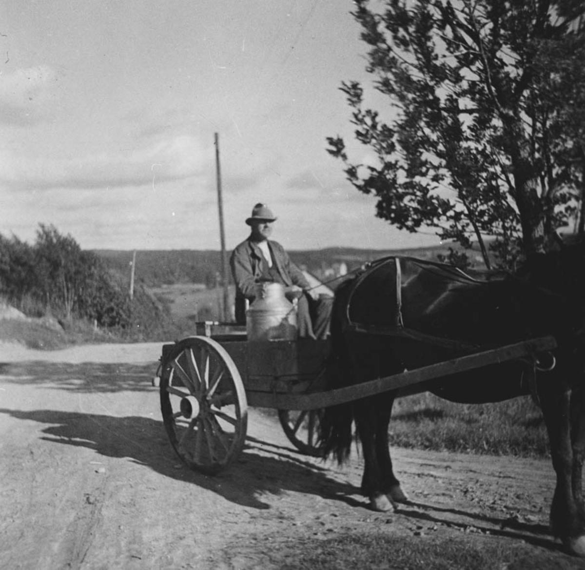 Mjølkekjøring til meieriet med hest og vogn.
