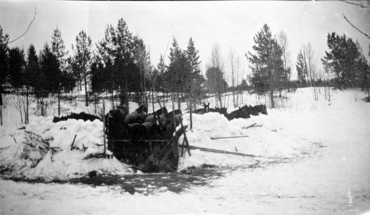 Militær vinterøvelse, Gardermoen, leir.