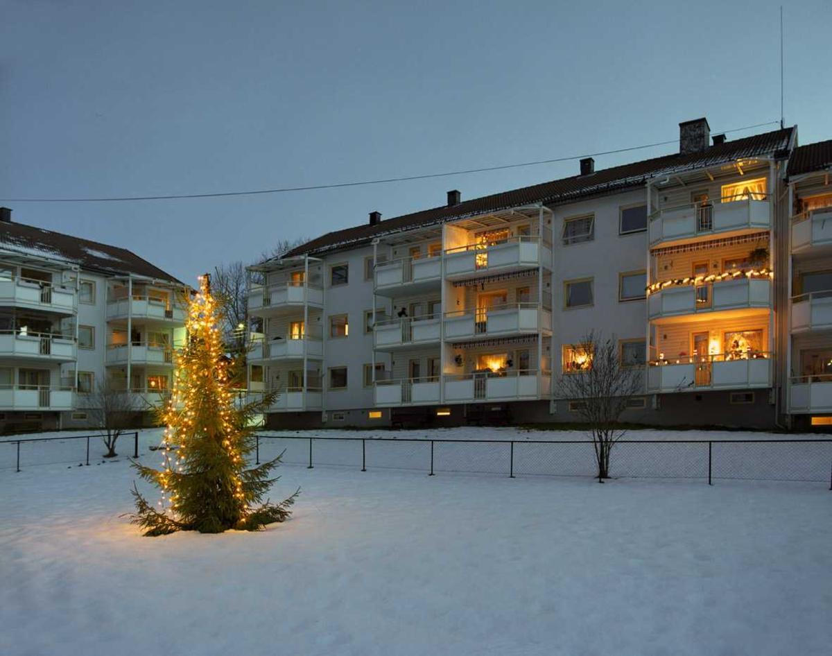 Julebelysning.  Juletre foran borettslag. Hvite lys i lenke henger nedover treet.