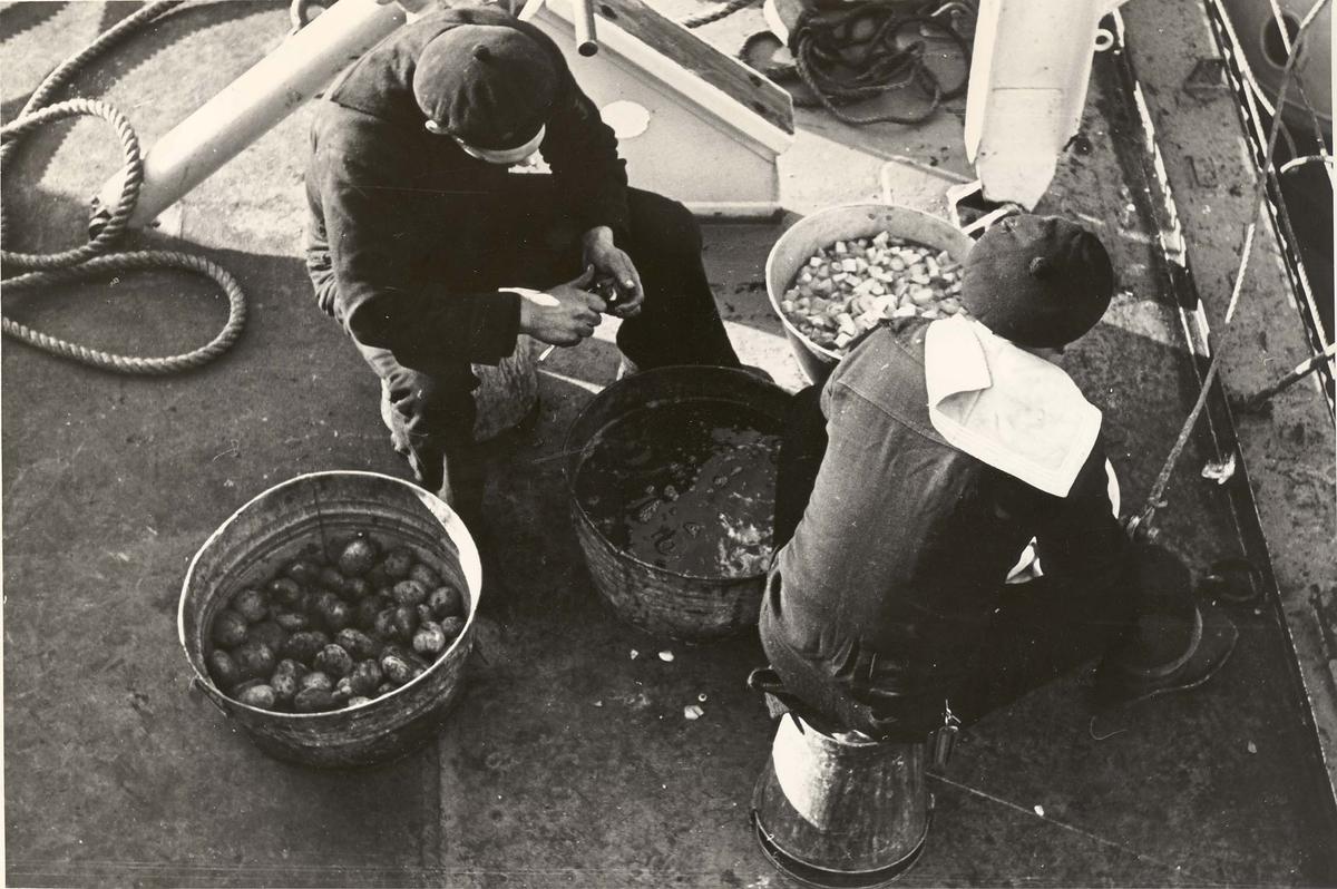 "Jageren ""Newport"". Fra livet om bord under 2. VK - potetskrelling."