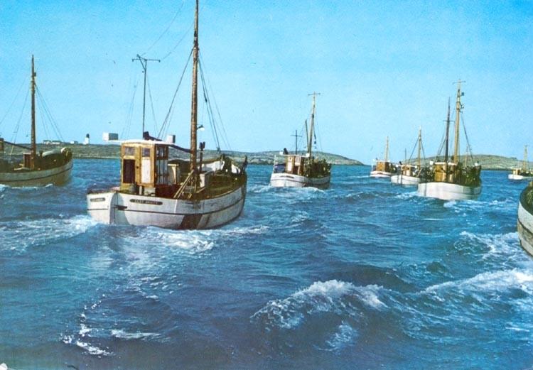 """Tryckt text på kortet: """"Bohuslän. Fiskeflottan på väg till fångstplatsen"""". Noterat på kortet: """"Rossö""""."""
