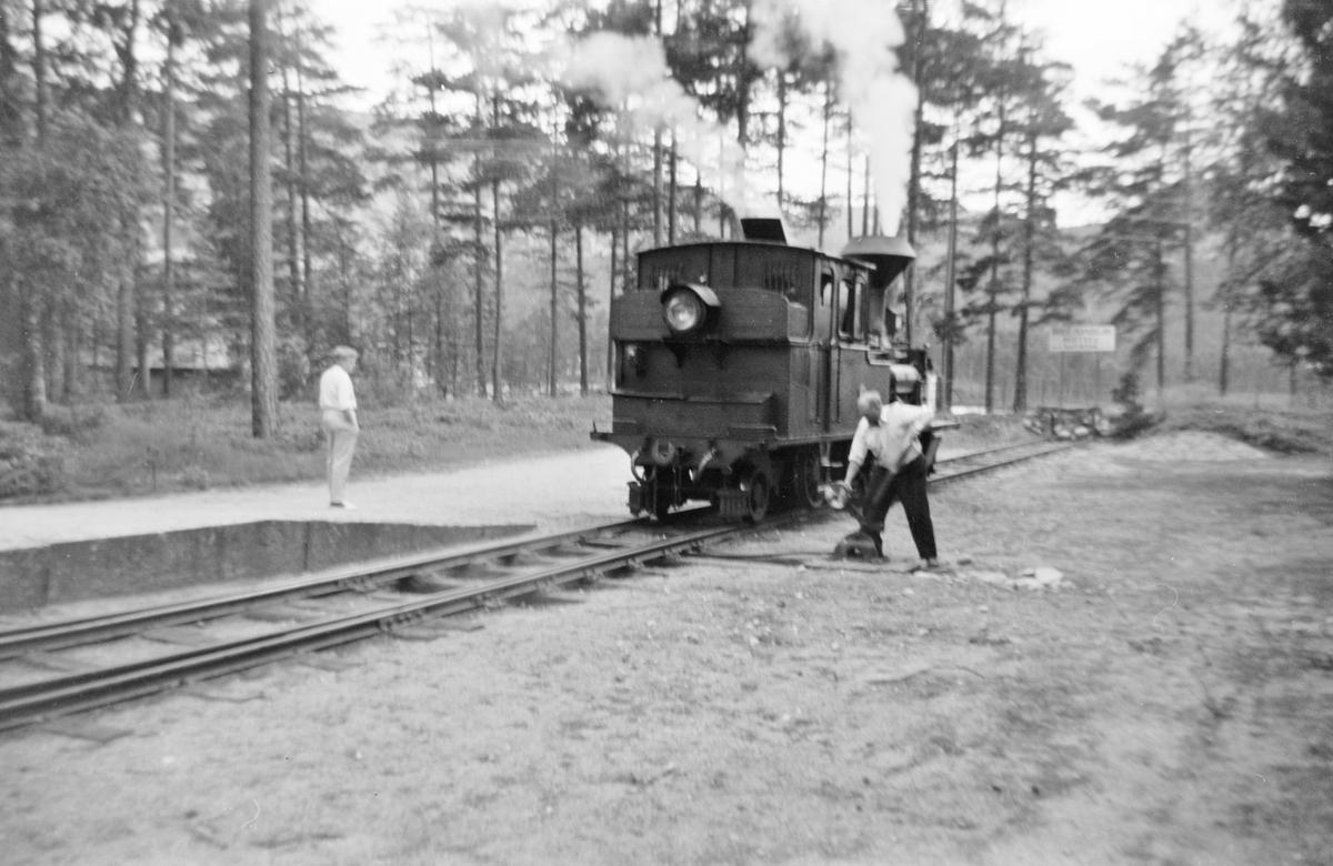 Damplok XXI nr. 2 på Byglandsfjord stasjon på Setesdalsbanen