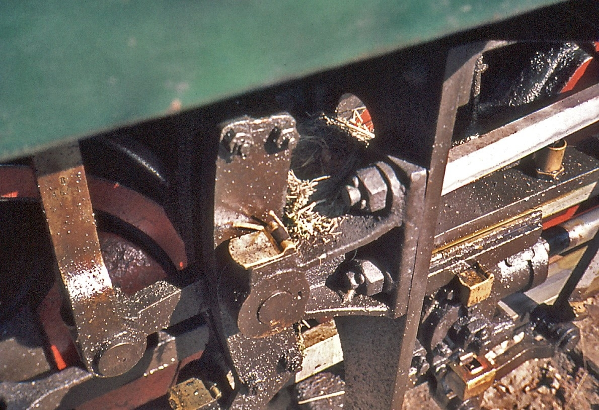 En fugl har bygget rede i maskineriet på Tertittens damplokomotiv