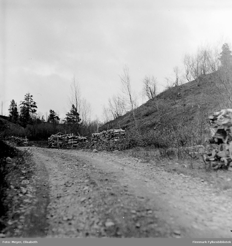 En grusvei med flere vedstabler til tørk langs veien. Fotografert av Elisabeth Meyer, sannsynligvis på hennes reise til Finnmark etter 2.verdesnkrig. Muligens er dette på veien til Gargia fjellstue.