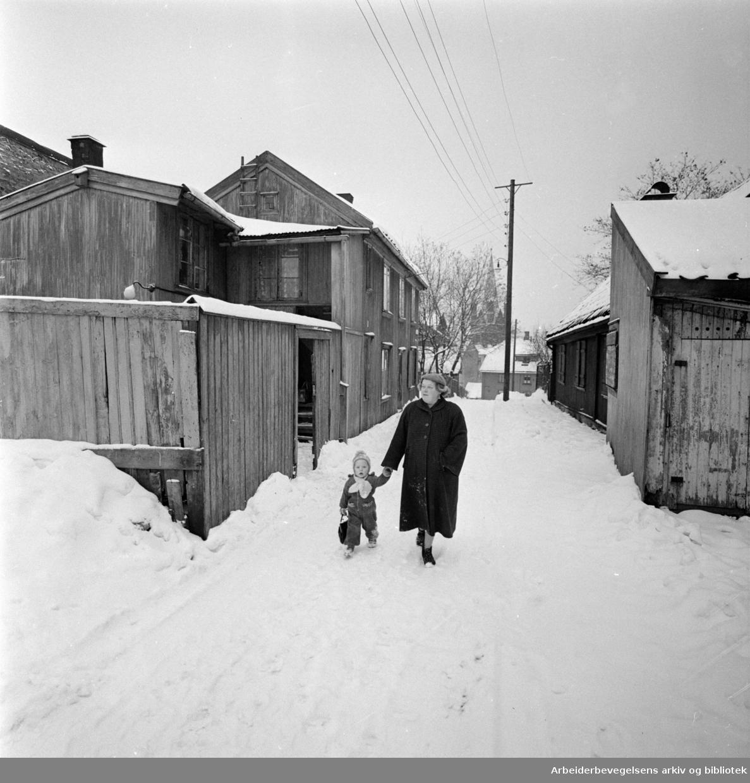 Enerhaugen.Langleiken.Desember 1959