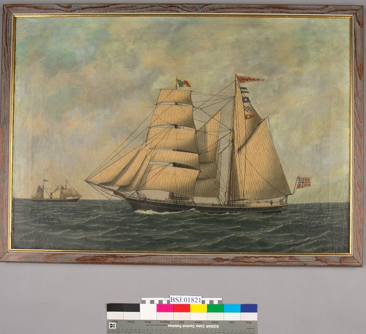 Maleri av skonnertbrigg ITALIA under seil. På fortoppen  italiensk flagg, unionsflagg under gaffelen. Ved baug i horisonten sees et dampskip med seilføring.