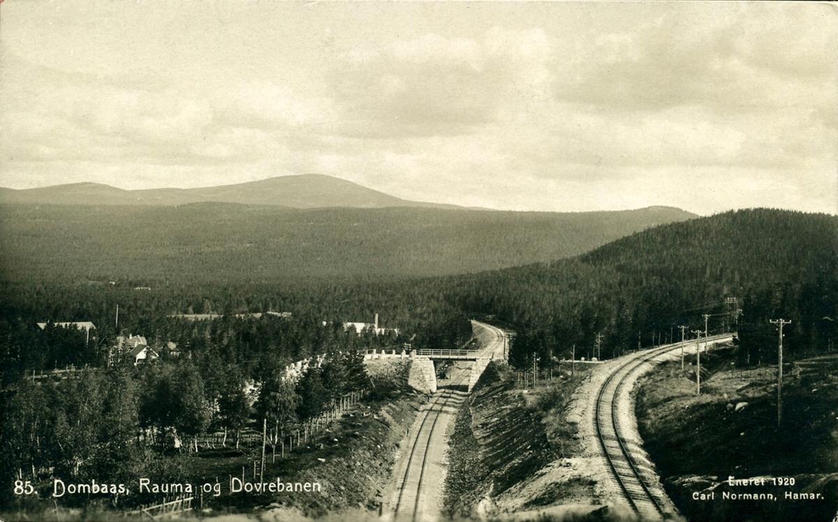 Raumabanen (t.v.) og Dovrebanen ved Dombås.