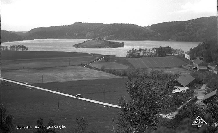 """Enligt Bengt Lundins noteringar: """"KOLBENGTSERÖD. Sjön med delar av gård. Vykort TF 817 Foto BL 1145""""."""