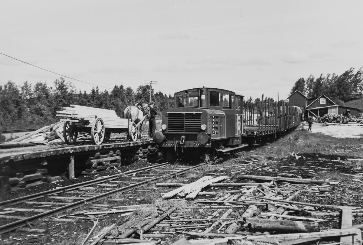 Kipptoget fra Skotterud ved lasterampen på Buåa stasjon på Vestmarkalinjen, eller Paradisbanen som den også ble kalt, siste driftsdag 10.07.1965.