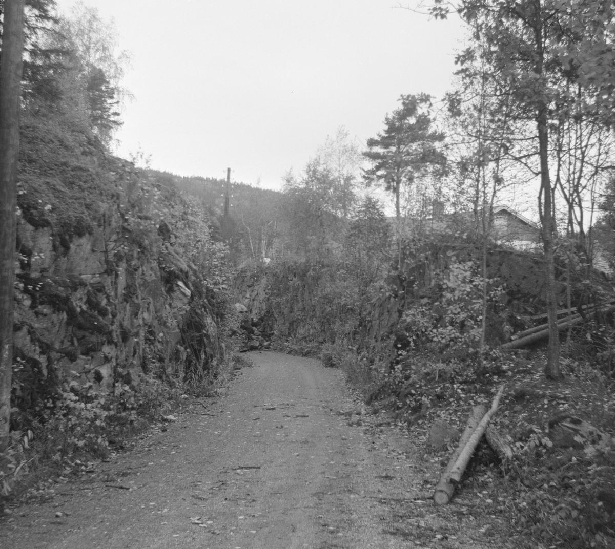 Langs traseen på nedlagte Tønsberg-Eidsfossbanen.