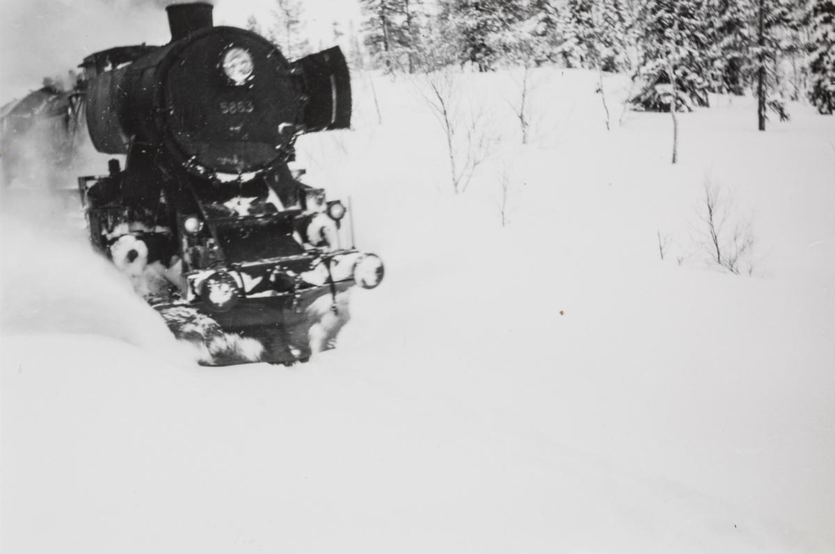 Kryssing mellom sørgående dagtog på Nordlandsbanen og nordgående godstog, tog 5771, på Majavatn stasjon. Dagtoget trekkes av lokomotiv type 63a nr. 5863.