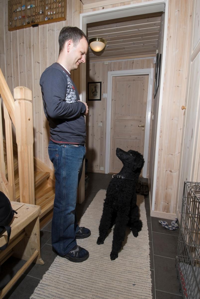 Hunden Pedro ser opp på sin eier i gangen i hjemmet sitt.