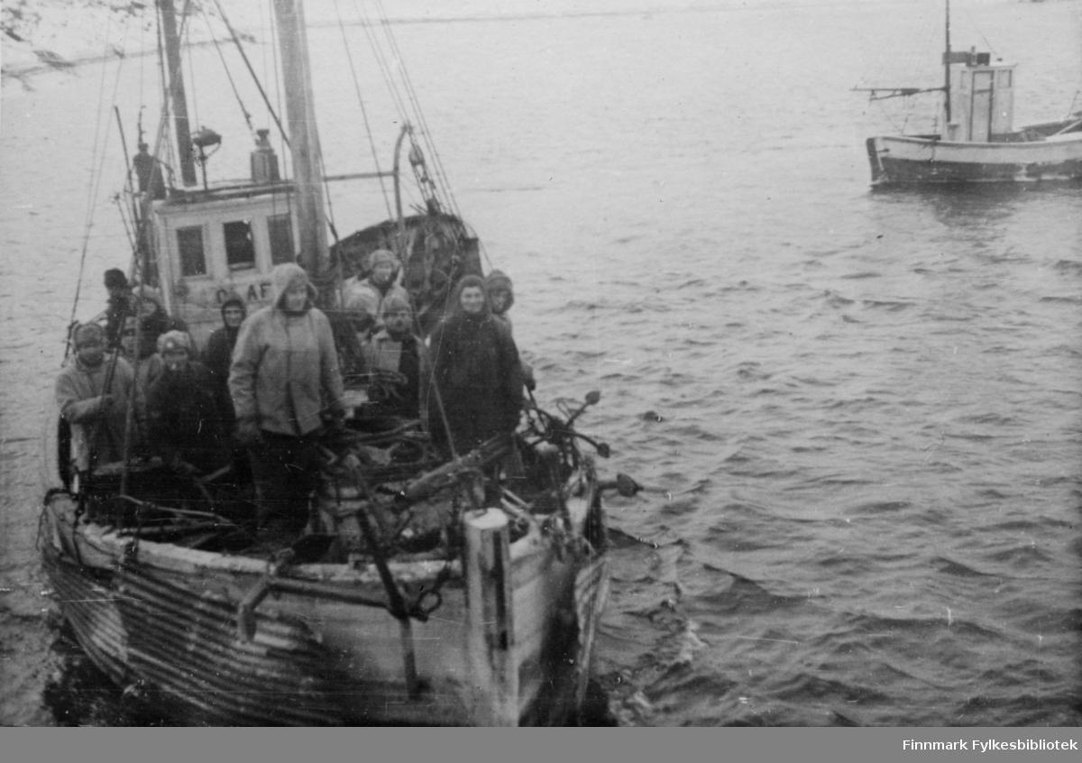 """En norsk liten fiskebåt, på styrhuset står det OLAF (m/k Olaf-F35LB). Det er Thoralf Jensen jr som er skipper. Ove Nilsen fra Kalak og Rudolf Grønnbeck fra Bekkarfjord vekslet på å være mannskap. På dette bildet, framme på babord side ser vi Ove Nilsen. Klærne skiller seg ut fra soldatenes påkledning.   Thoralf Jensen jr. og båten hans var underlagt militær kommando og stasjonert i Holmefjord i Porsanger.  De som er ombord er et befal og soldater fra Bergkompani 2. De skal levere forsyninger til soldatene som er stasjonert i Holmbukt. Isen er 10-20 cm tykk. Skipperen er redd for båten, og protesterer til ingen nytte. Soldatene bruker hesten og finner tak i bølgeblikkplater de rigger til på sidene av båten.  Båten til høyre i bildet er m/k """"Glimt"""" av Sørøya, F64HV, 29fot og Skipper Johan Eilertsen fra Breivikbotn. Båten var i tjeneste for Bergkompaniet da den ble tatt 21.02.1945 i det som er omtalt som """"Tragedien i Sortvik"""". Johan Eilertsen og Ragnar Jensen, begge fra Breivikbotn på Sørøya, mistet livet.   Bildeserien """"Frigjøringen av Finnmark 1944-45"""" viser et unikt materiale fotografert av soldater i Den Norske Brigade, 2. Bergkompani under deres oppdrag """"Frigjøringen av Finnmark"""" som kom i stand under dekknavn """"Øvelse Crofter"""". Fakta rundt dette bildematerialet illustrerer iflg. vår informant, George Bratli: """"2.Bergkompani, tilhørende Den Norske Brigade i Skottland,  reiste fra Skottland 30. oktober 1944 med krysseren «Berwick» til Scapa Flow på Orkenøyene for å slutte seg til en større konvoi som skulle være med til Norge. Om bord på andre skip var det mange russiske krigsfanger som hadde vært på tysk side og som nå ble sendt hjem.  2.Bergkompani forlot havn 1.november 1944 og kom til Murmansk, Sovjetunionen, 6. november 1944.  De ble her lastet om og fraktet til Petsamo, Sovjetunionen, hvor de ankommer 11.november 1944.  Kompaniet reiser så til Sandnes utenfor Kirkenes og blir forlagt der frem til 26.november 1944. De flytter så videre til Skiippagurra.  Den 29."""