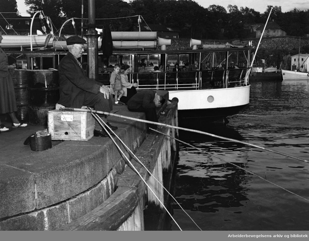 Havna. Bryggefiskere. 1950 åra